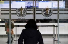 WHO : Eropa Butuh Percepatan dalam Memerangi Covid-19