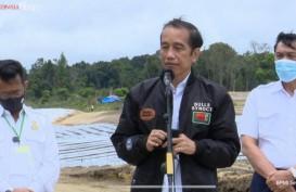 Jokowi Targetkan Hasil Food Estate di Sumut Terlihat dalam 2 Bulan