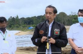 Jokowi Targetkan Hasil Food Estate di Sumut Terlihat…