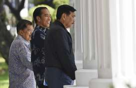 Kebanggaan Luhut & Jokowi, Ini Pembangkit 'Made in' China Senilai Rp357 T