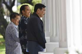Kebanggaan Luhut & Jokowi, Ini Pembangkit 'Made in'…