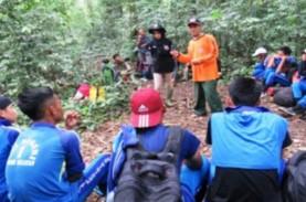 Lampung Gelar Festival Kehutanan, Ini 3 Tujuannya