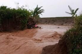 Tanggul Jebol, Padi Siap Panen di Pati Terendam Air