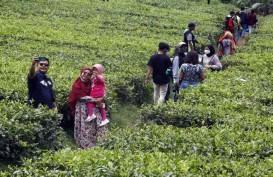 Rapid Test Wisatawan di Puncak Bogor, 69 Orang Reaktif