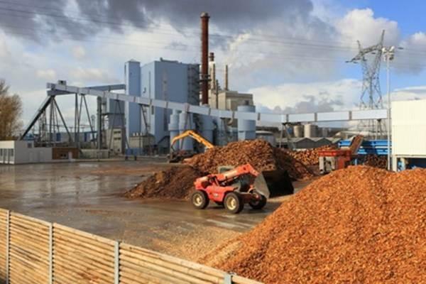 Listrik biomassa - Istimewa