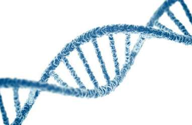 Lebih Mirip Siapakah Anda Secara Genetik, Ibu atau Ayah?