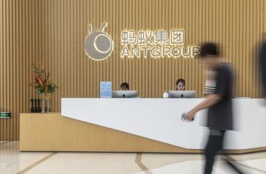 IPO Jumbo Ant Group Tertunda, Benarkah Ada Campur Tangan Beijing?