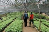 Pulihkan Lingkungan, Anak Usaha Grup ABM (ABMM) Raih Penghargaan