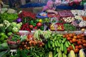 Sayuran Lembang Bandung Diekspor ke Singapura