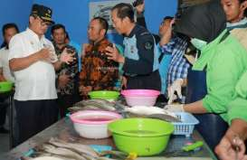 Kemenperin Akui Kinerja Industri Pengolahan Ikan Kurang Greget