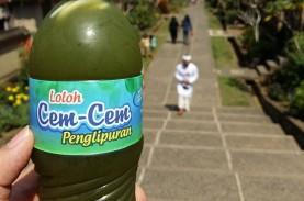 Jangan Lupa Coba Minuman Es Tradisional di Bali