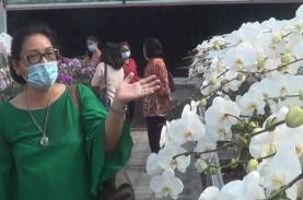 Agrowisata Jadi Favorit Baru di Bali