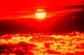 Mengenal Gelombang Panas dan Negara yang Pernah Mengalaminya