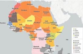 Benua Afrika Diprediksi Pecah, Laut Baru Terbentuk dan Madagaskar Terbelah