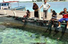 Setelah 65 Tahun, Pulau Pari Banjir Rob Dua Kali Setahun
