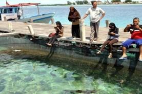 Setelah 65 Tahun, Pulau Pari Banjir Rob Dua Kali Setahun…