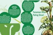 TANAMAN UNTUK KEHIDUPAN : Gaya Hidup Baru Pertanian Kota