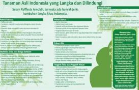 POHON UNTUK MASA DEPAN : Berkah Flora Nusantara