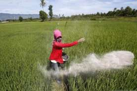 Direksi Pupuk Indonesia Dirombak Lagi, Ini Susunan…