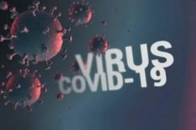 Update Covid-19 WNI di Luar Negeri: Kasus 1.978, Sembuh…