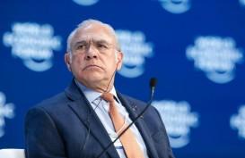 Laporan OECD, Reformasi Ambisius Percepat Pemulihan Ekonomi
