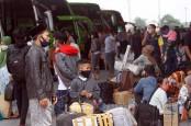 Organda: Penumpang Belum Tahu, Naik Bus Tak Butuh Syarat Rumit