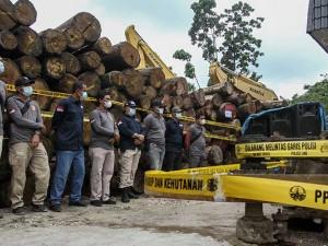 Operasi Gabungan di Riau Berhasil Mengamankan Kayu Ilegal