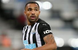 Prediksi Crystal Palace Vs Newcastle: Callum Wilson Sudah Bisa Main