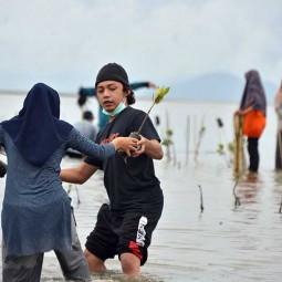Aksi Tanam Bebit Mangrove di Kawasan Pesisir Desa Lam Badeuk Aceh