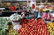 Mantap, Jakarta Barat Panen Sayuran dan Ikan dari 40 Lokasi