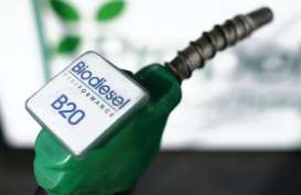 Aprobi Sebut Pabrikan Biodiesel Tambah Kapasitas Produksi di 2021