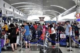BPS: Penumpang Pesawat Domestik Naik 17,33 Persen…