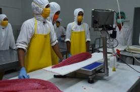 Industri Pengolahan Ikan Ubah Strategi Selama Pandemi…