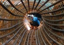 Pekerja mengelas kawat tiang pondasi proyek double-double track (DDT) atau rel ganda Paket A Manggarai-Jatinegara, Jakarta, Jumat (21/)./Antara-Angga Budhiyanto