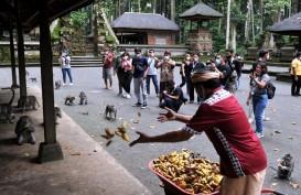 Gelombang PHK di Bali pada Oktober Melandai