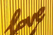 Kuning dan Abu-Abu Jadi Tren Warna 2021 Pilihan Pantone