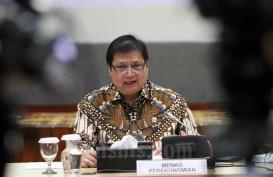 Presiden Tunjuk Menko Airlangga jadi Ketua Harian Dewan Nasional Keuangan Inklusif