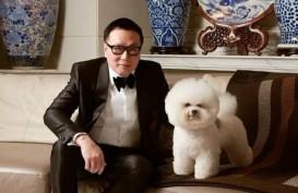 Ingatkan Pentingnya Investasi, Harry Su: Jangan Menikah Terlalu Muda