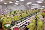 Panca Mitra Multiperdana (PMMP) Gunakan Dana IPO Untuk Bangun Pabrik
