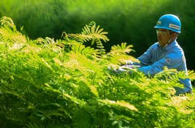 Jaga Kelestarian Lingkungan, ANTAM Raih Peringkat Proper 2020