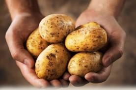 6 Bahan Makanan yang Tidak Boleh Masuk Kulkas