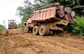 Ilegal Logging, UD Karya Abadi dan Pemiliknya Jadi Tersangka