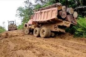 Ilegal Logging, UD Karya Abadi dan Pemiliknya Jadi…