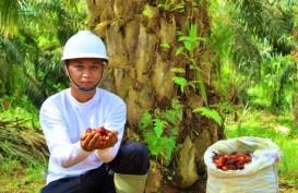 FAP Agri (FAPA) Jadi Emiten IPO Perdana 2021, Kapitalisasi Pasar Rp6,6 T