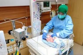 UNICEF Prediksi 371.504 Bayi Lahir pada 1 Januari…