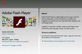 Adobe Flash Player Tamat Riwayat Mulai 12 Januari