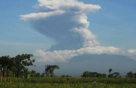 Gunung Merapi Muntahkan Material Hingga 1,5 Km