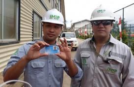 GEM Akan Gandakan Kepemilikan pada Proyek Nikel di Indonesia