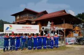 PLN Gandeng Pertamina Kembangkan Panas Bumi di Ulubelu & Lahendong