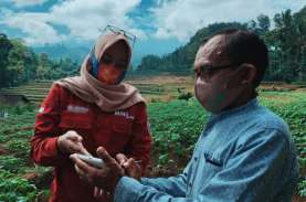 BNI Gelar Smartfarming, Dukung Ketahanan Pangan Nasional